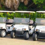 Reliable Golf Carts Sodexo